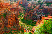 Zion NP - View from Angels Landing Trail